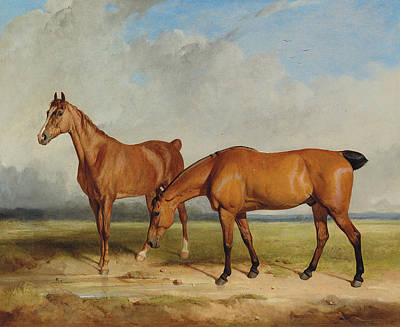 Bay Hunter And Chestnut Mare In A Field Art Print by Thomas Woodward