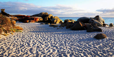Photograph - Bay Of Fires Sunrise by Lexa Harpell