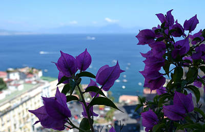 Photograph - Bay Of Naples by Terence Davis