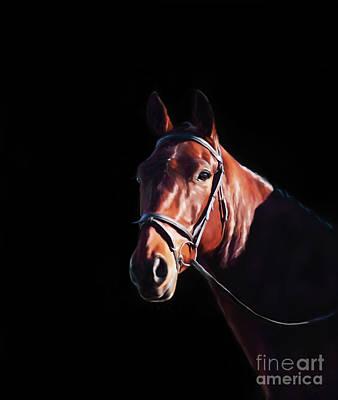 Bay On Black - Horse Art By Michelle Wrighton Art Print