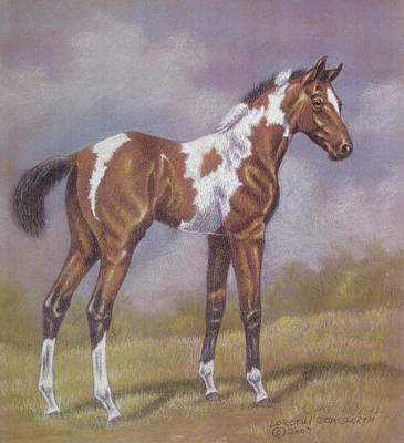 Bay Paint Foal Art Print by Dorothy Coatsworth