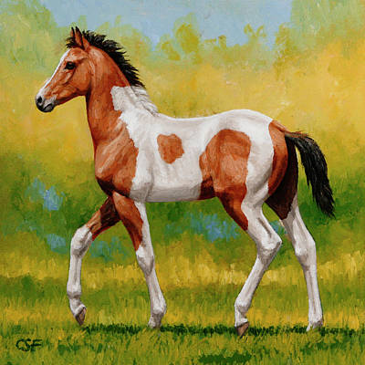 Pinto Horse Painting - Bay Pinto Foal by Crista Forest