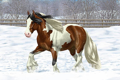Bay Pinto Gypsy Vanner In Snow Art Print by Crista Forest