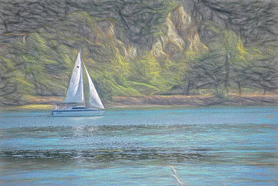Photograph - Bay Sailing by Bill Posner