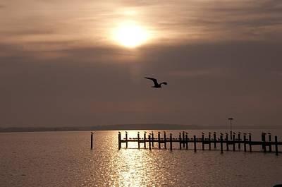 Pier Digital Art - Bay Sunrise by Bill Cannon