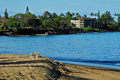Bay View In Kahana Maui Art Print by Kirsten Giving
