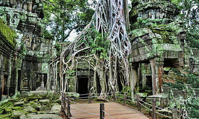 Photograph - Bayon Tree Ta Prohm Cambodia  by Chuck Kuhn