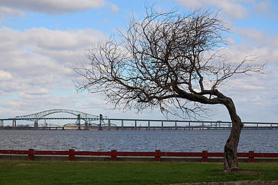 New Jersey Photograph - Bayonne by Steven Richman