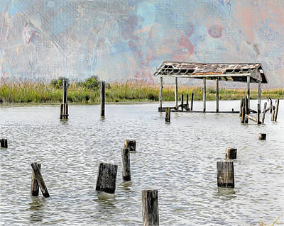 Mixed Media - Bayou After The Storm by Erwin Spinner