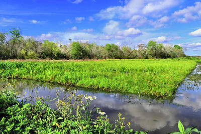 Photograph - Bayou Beautiful by Laura Ragland