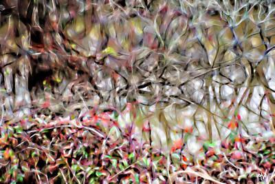 Photograph - Bayou Brilliance Reflected by Gina O'Brien