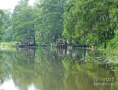 Photograph - Bayou Chene Blanc La by Lizi Beard-Ward