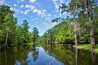 Photograph - Bayou Cheverau, Atchafalaya Basin by Andy Crawford