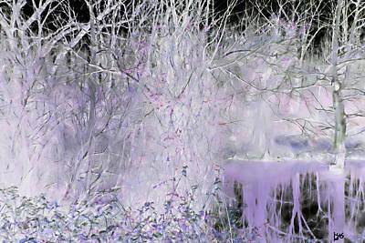 Photograph - Bayou Fantasies by Gina O'Brien