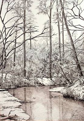 Bayou Lacombe At Peace Grove Ll Art Print by Colleen Marquis