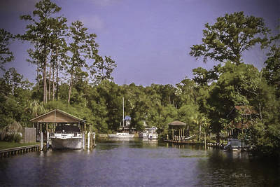 Photograph - Bayou Living by Barry Jones