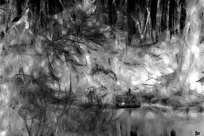 Photograph - Bayou Shadows by Gina O'Brien