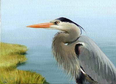 Wetlands Drawing - Bayou Watch Heron by Heather Mitchell