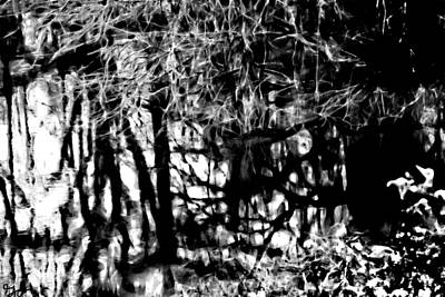 Photograph - Bayou Water In Black And White by Gina O'Brien