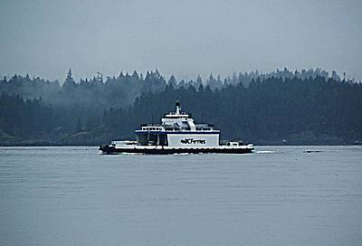 Photograph - Bc Ferries Island Hopper by Barbara St Jean