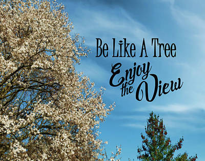 Photograph - Be Like A Tree- Enjoy The View by Judi Saunders