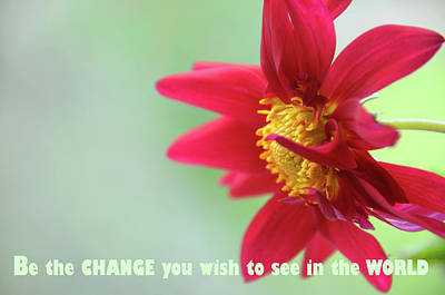 Photograph - Be That Change by Jenny Rainbow