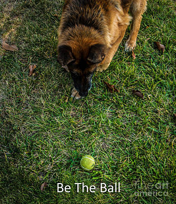 Photograph - Be The Ball by Blake Webster