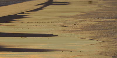Photograph - Beach Abstract by Carla Parris