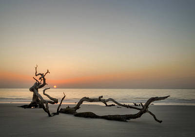 Photograph - Beach Art by Greg Mimbs