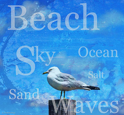 Beach Art Seagull By Sharon Cummings Art Print by Sharon Cummings