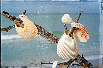 Florida House Mixed Media - Beach Art - Seashell Shrine - Sharon Cummings by Sharon Cummings
