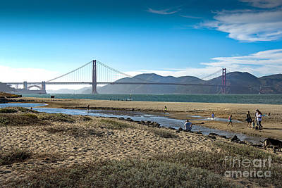 Photograph - Beach At Presidio Golden Gate by David Zanzinger