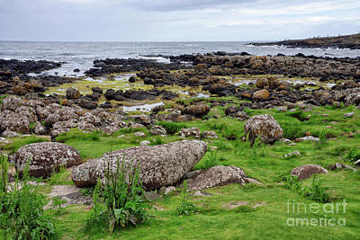 Photograph - Beach At The Giants Causeway In Northern Ireland United Kingdom by Vizual Studio