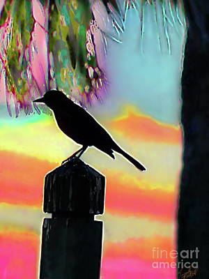 Photograph - Beach Bird Sunset Sihloute by Expressionistart studio Priscilla Batzell