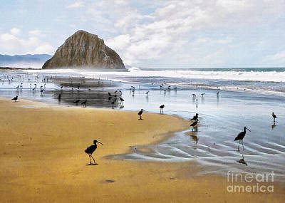 Photograph - Beach Birds  by Sharon Foster