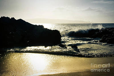 Photograph - Beach Bronze by Sharon Mau