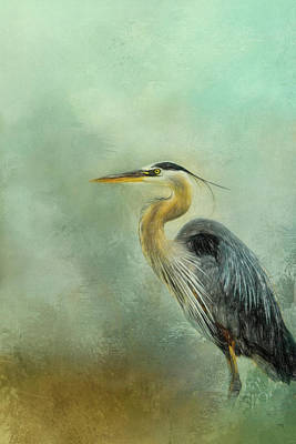 Photograph - Beach Buddy Blue Heron Bird Art by Jai Johnson