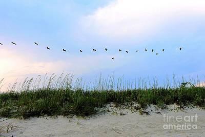 Photograph - Beach Club Dunes by Shelia Kempf