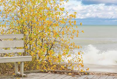 Photograph - Beach Color by Patti Raine