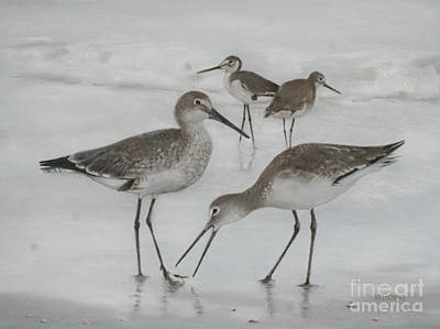 Sandpiper Drawing - Beach Combers by Richard Reinders