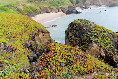 Coast Highway One Photograph - Beach Coves At Pigeon Point by Art Block Collections