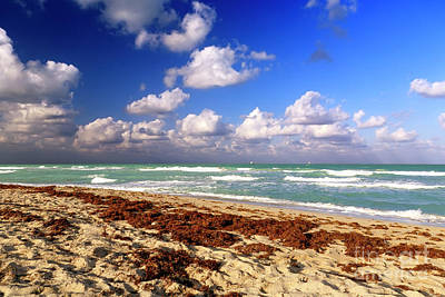 Photograph - Beach Day At South Beach by John Rizzuto