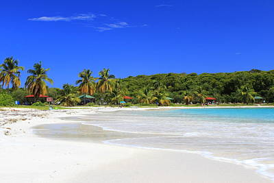 Photograph - Beach Day In Vieques by Fiona Kennard