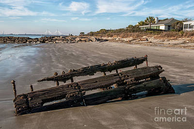 Photograph - Beach Debris by Dale Powell