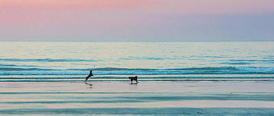 Photograph - Beach Dogs Playing At Dawn by Thomas Lavoie