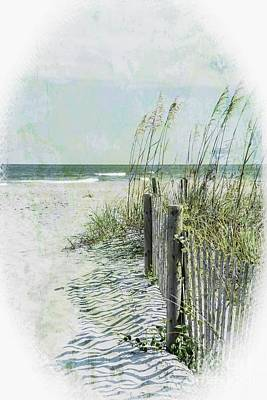 Photograph - Beach Dreaming by Debbie Green