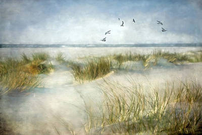 Photograph - Beach Dreams by Annie Snel
