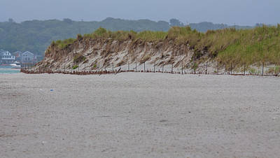 Photograph - Beach Dune by Brian MacLean