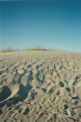 Photograph - Beach Dune by Utopia Concepts