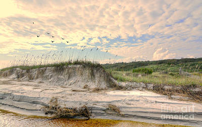 Photograph - Beach Dunes And Gulls by Kathy Baccari